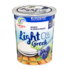 Blueberry Greek Light 0% Fat Free Sugar Free