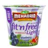 Blue Berry Fat Free Sugar Free